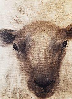 今日は羊さんに 会いに行こう