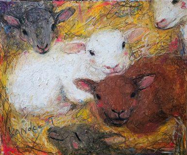農場の子羊